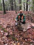 Deer in Woods.jpg