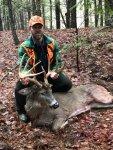 Deer in Woods2 (2).jpg