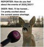 Ammo Deer.jpg